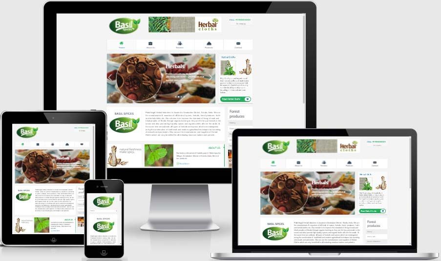 Spices website design and development